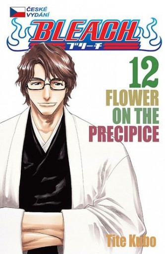 Bleach 12: Flower on the Precipice
