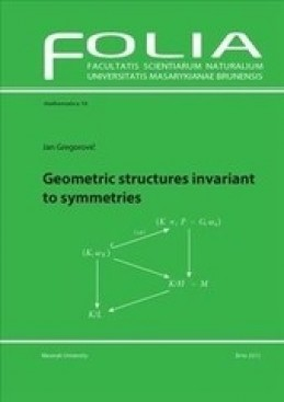 Geometric structures invariant to symmetries